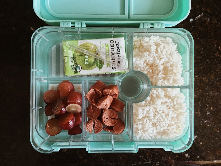 Bento Box Packed Lunch