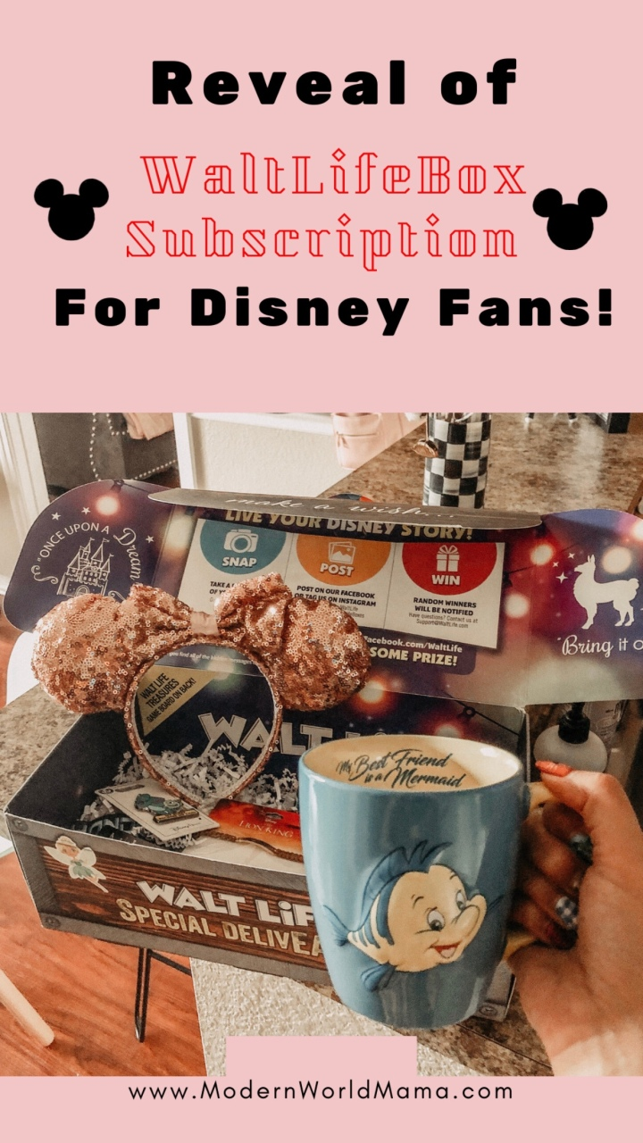 Walt Life Disney Subscription Box